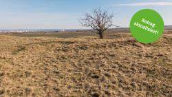 Energieeffizienzpreis 2019 - die Gewinnerinnen und Gewinner / Foto: ThEGA/Matthias Eckert