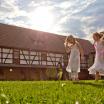 Das Rittergut Positz im Sommer