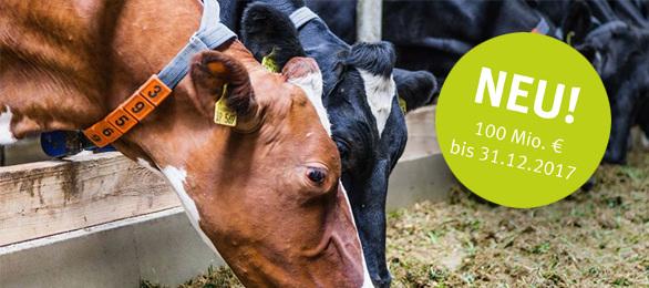 Agrarbürgschaften - 100 Mio. zugesagt