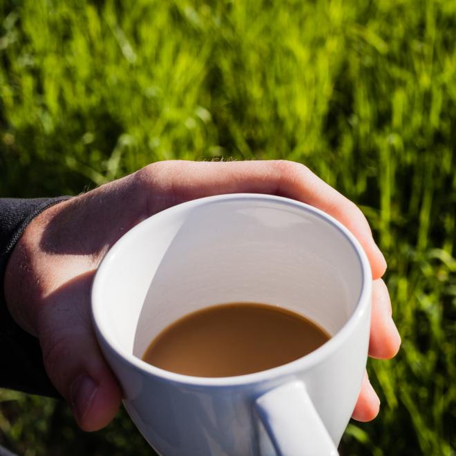 Gründungscafé (im Bild: eine Tasse Kaffee vor grüner Wiese)
